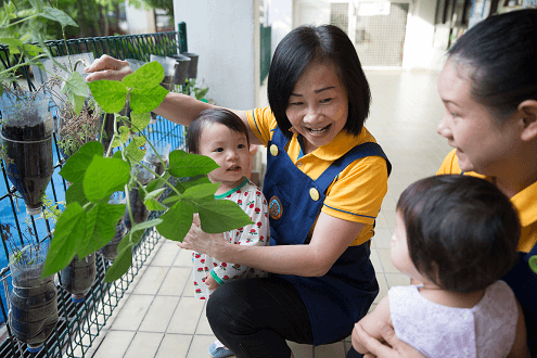A simple potted plant can be a learning aid for infants